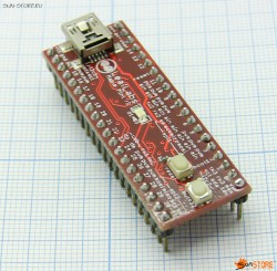 Arduino Maple Mini (Cortex M3)